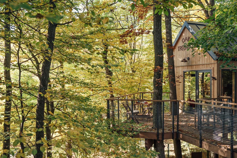 Oak Tree House, Slovakije. Beeld RV