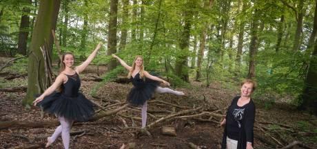 Wandelen en balletfilmpjes kijken op de Rhenense Laarsenberg: 'Het bos inspireerde ons'