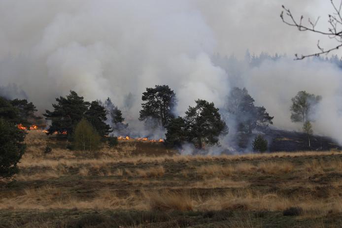 De brandweer is met groot materieel uitgerukt naar de heidebrand.