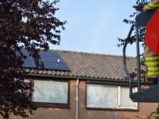 Kip zit klem tussen zonnepanelen op dak in Zevenaar