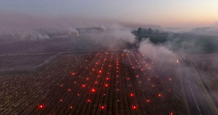De zon komt op boven de Vouvray-wijngaard in Touraine, in de Franse Loire-vallei. Om de druivenplanten te beschermen tegen de vrieskou aan de grond zijn vuurtjes aangestoken. Beeld AFP