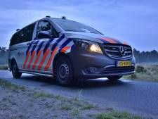 Politie betrapt Waalwijkse (28) automobilist: man rijdt rond onder invloed van drank en drugs