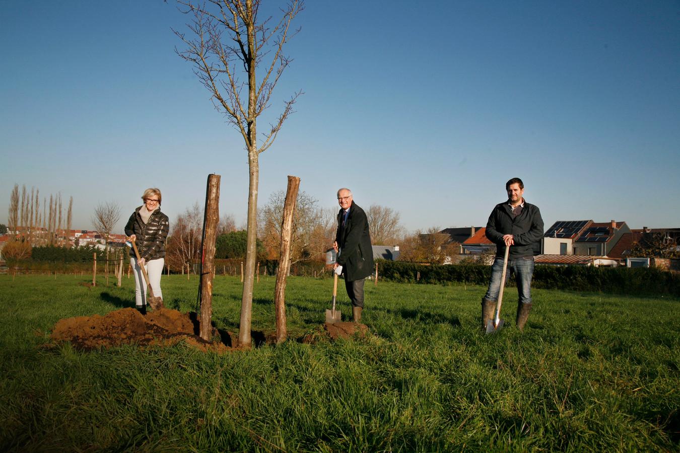 De eerste bomen en struiken van het nieuwe natuurpark aan de oevers van de Zuunbeek in Zuun en Negenmanneke werden aangeplant.