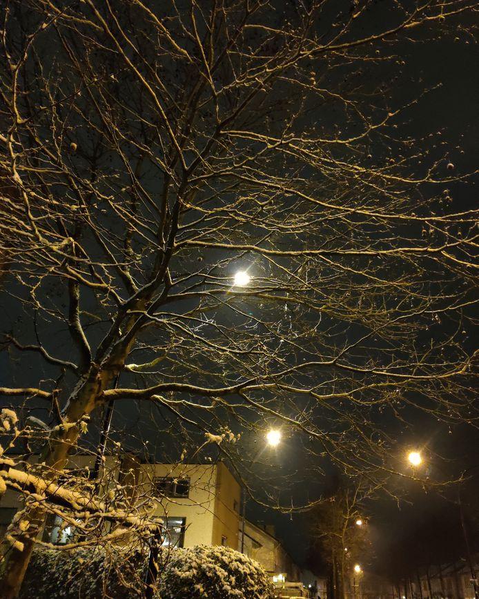Samenspel van sneeuw en straatlicht.