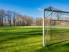 Vanwege corona: 'Stel bezuinigingen op sport en cultuur in Berkelland uit'