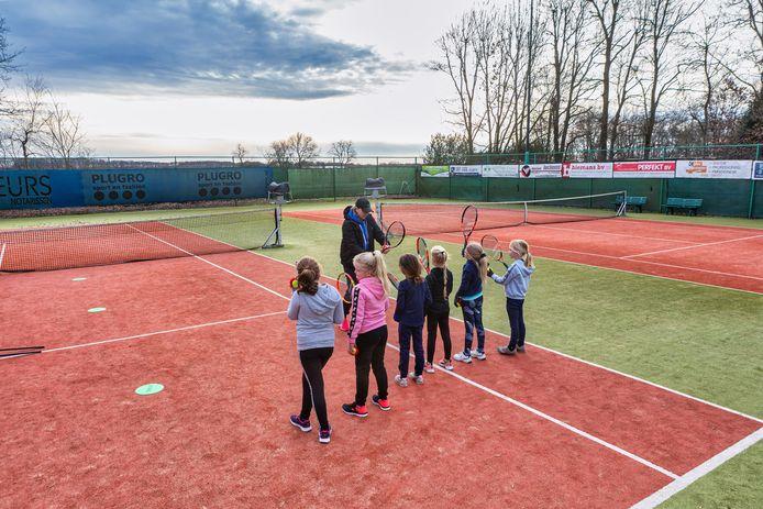 Tennisclub Den Hout heeft momenteel twee banen, maar wil er nu een derde bij.