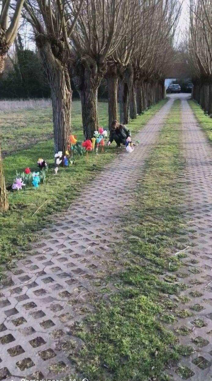 De oprijlaan van Leopold Lippens wordt al het hele weekend versierd met bloemetjes uit papier-maché, een symbool voor de kust.