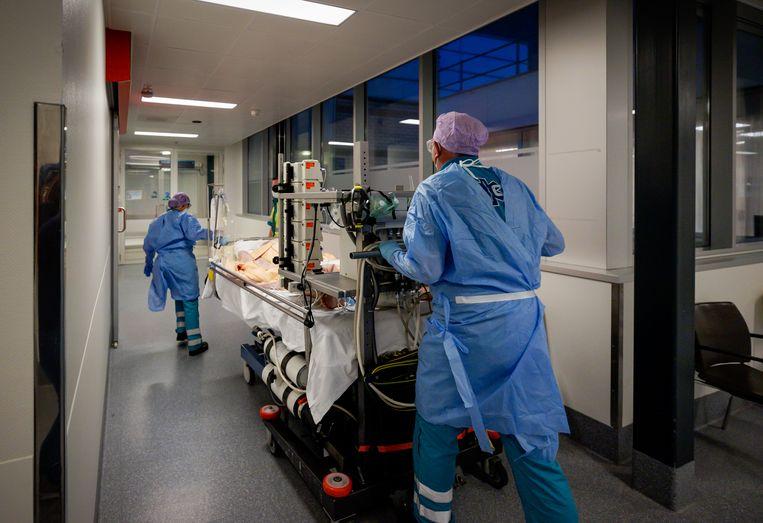 Behandeling met antistoffen zou veel ziekenhuisopnames kunnen voorkomen. Beeld Hollandse Hoogte /  ANP