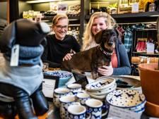 Eerste teckelwinkel van Nederland krijgt vast stekje in Deventer: 'We gaan gewoon verder'