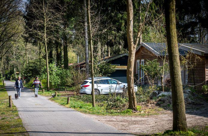 Landgoed De Stille Wille, dat een kwaliteitsimpuls krijgt de komende jaren.