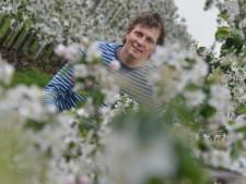 Fruittelers zetten pompen buiten om bloesem te beschermen tegen vorst