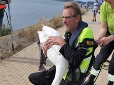 Edwin redde een zwaan, maar verloor zijn portemonnee: 'Met daarin donaties voor de stichting'
