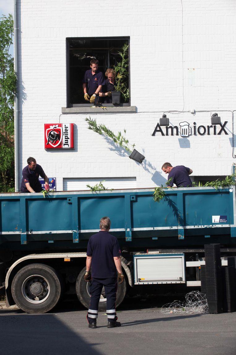 De planten van de plantage in café Ambiorix werden vernietigd
