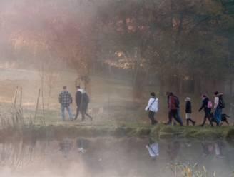 Leerkrachten Sint-Catharinacollege doen mee aan Pink Walk voor onderzoek naar borstkanker