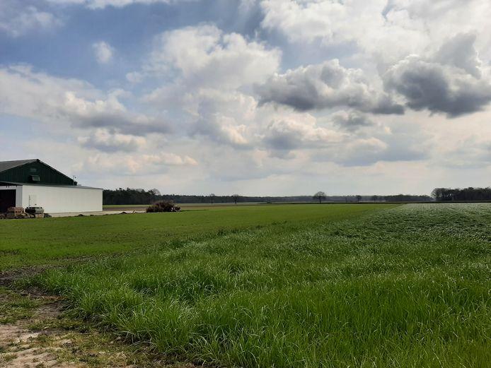 Open agrarisch gebied Kwaalburgse Heide in Alphen, prominent in beeld als toekomstige locatie voor windmolens.