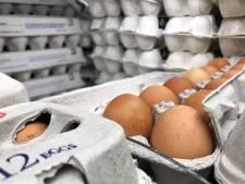 Le prix des oeufs a doublé depuis la crise alimentaire