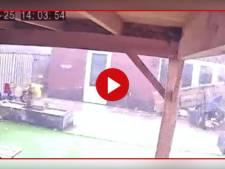 Video van de Dag | Bewakingscamera in tuin filmt verwoestende windhoos in Nijverdal