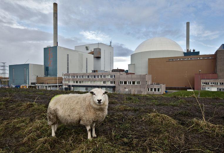 De energiecentrale van EPZ in het Zeeuwse Borssele. Rechts: de kernenergiecentrale. Beeld ANP