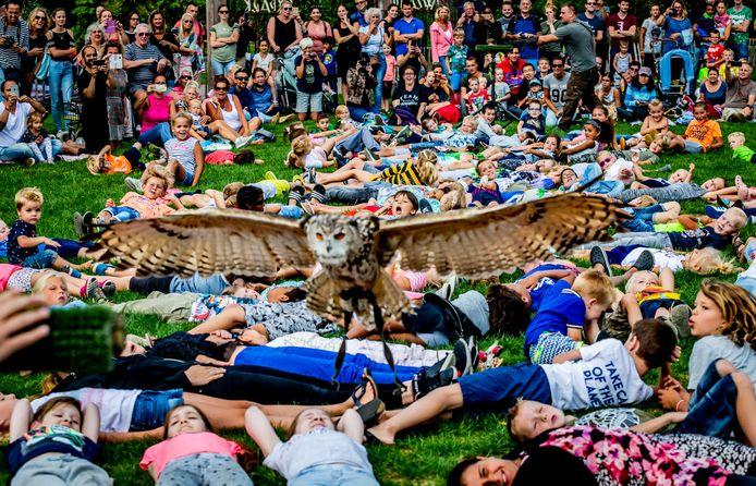 Roofvogelshow in het Rotterdamse Plaswijckpark.