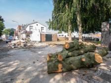 Vallende tak richt enorme schade aan bij joodse begraafplaats in Almelo: 'Jammer hè'