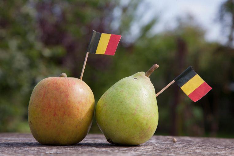 Appelen en peren van eigen bodem. Beeld photo_news
