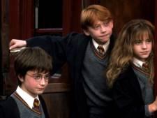 Soirée Harry Potter en plein air à Fléron: projection, initiation au Quidditch, ...