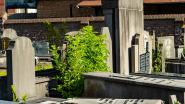 Koperen engel gestolen van grafmonument op kerkhof