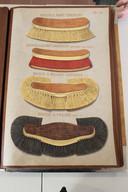 De borstels in de catalogus zijn met de hand geschilderd of getekend.