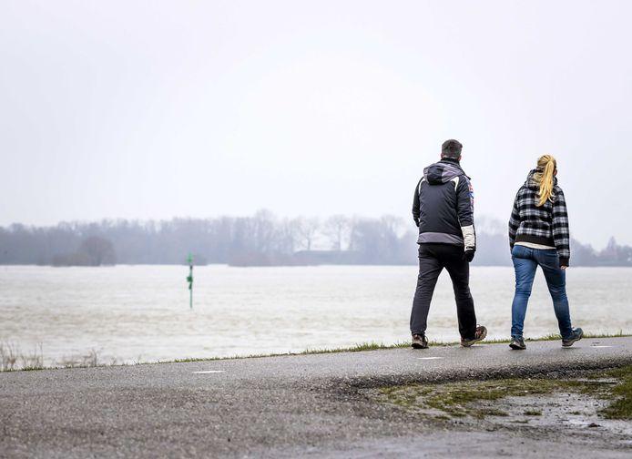 Lopen langs de Waal bij Zaltbommel.