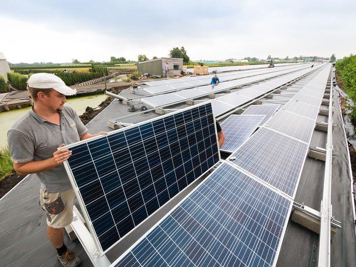 De 'pijpenla' aan de Voorweg waar Cees Lourier zijn kwekerij had, verandert in rap tempo in het eerste grote zonnepark in het Groene Hart.