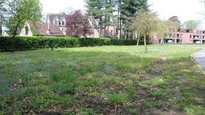 Gemeente wil géén groot psychiatrisch centrum op site Torenhof