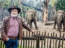 Hoe de kudde omgaat met verlies van olifantje Thabo: 'Ze worden stil, bedekken de overledene met bladeren'