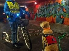 Autistische Tycho: Kijk uit met vuurwerk bij mijn hulphond