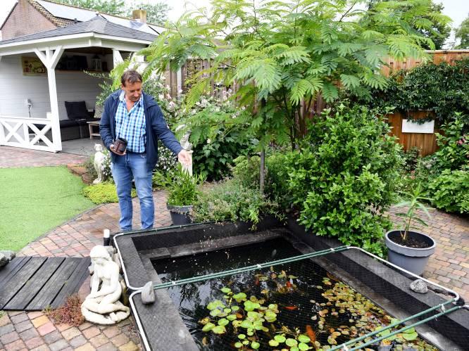 De onderhoudsvriendelijke tuin van Ronald: hij maait het 'gras' niet, maar stofzuigt het