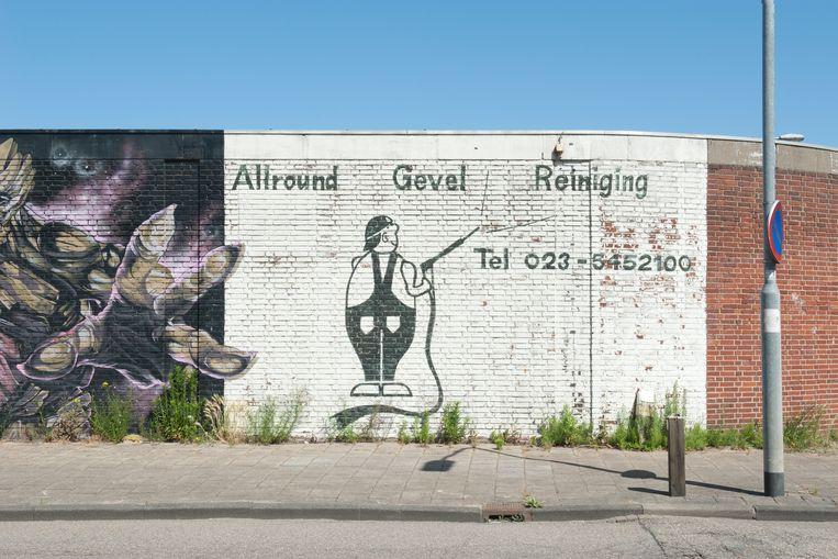 Muurschildering aan de Jan van Krimpenweg, vlak bij station Haarlem Spaarnwoude.  Beeld Ko Hage