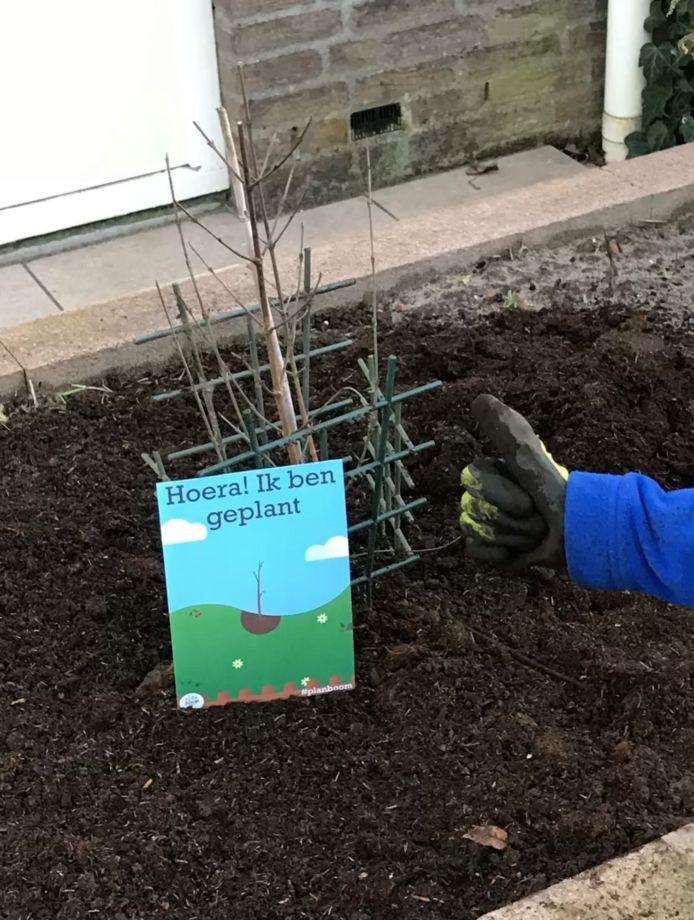 Boompjes voor Beginners is onderdeel van Plan Boom, dat streeft naar tien miljoen nieuwe bomen in vier jaar tijd.