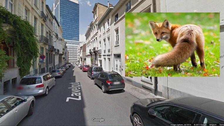 null Beeld Google Maps, Thinkstock