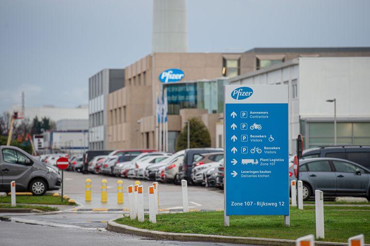 De fabriek van Pfizer in Puurs. Beeld BELGA