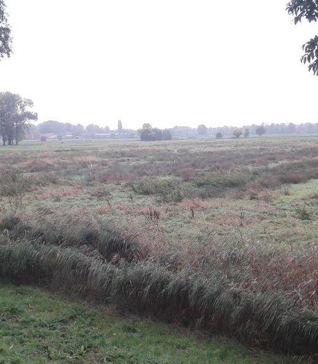 Voorlopig nog geen verplichte sanering weiland Sprang-Capelle