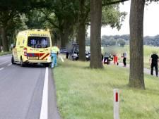 Bestuurder (80) overleden door botsing tegen boom op N271 in Milsbeek