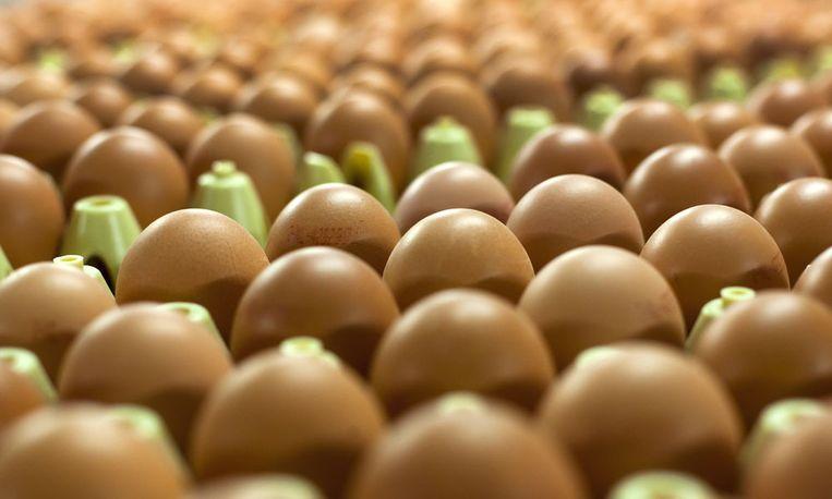 Salmonella kan onder andere van rauwe eieren komen. Beeld anp