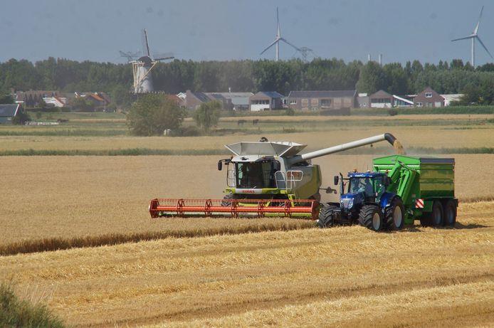 In de weilanden en polders van Voorne-Putten en de Hoeksche Waard moet gezocht worden naar potentiële woningbouwplekken, vindt het Economisch Instituut voor de Bouw.