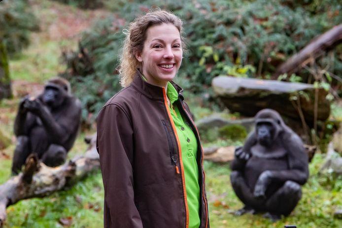 Nicole Brands uit Holten is gorillaverzorgster en reist volgende week af naar Taiwan om twee vrouwtjes te introduceren bij een mannetje. De gorilla's zijn al een maandje weg.