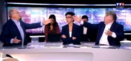 Gilbert Collard et Daniel Cohn-Bendit échangent des noms d'oiseaux en direct sur TF1
