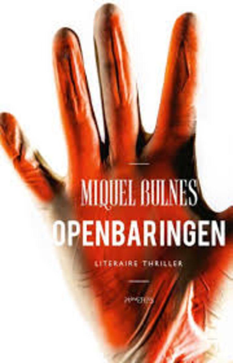 Miquel Bulnes: Openbaringen Beeld