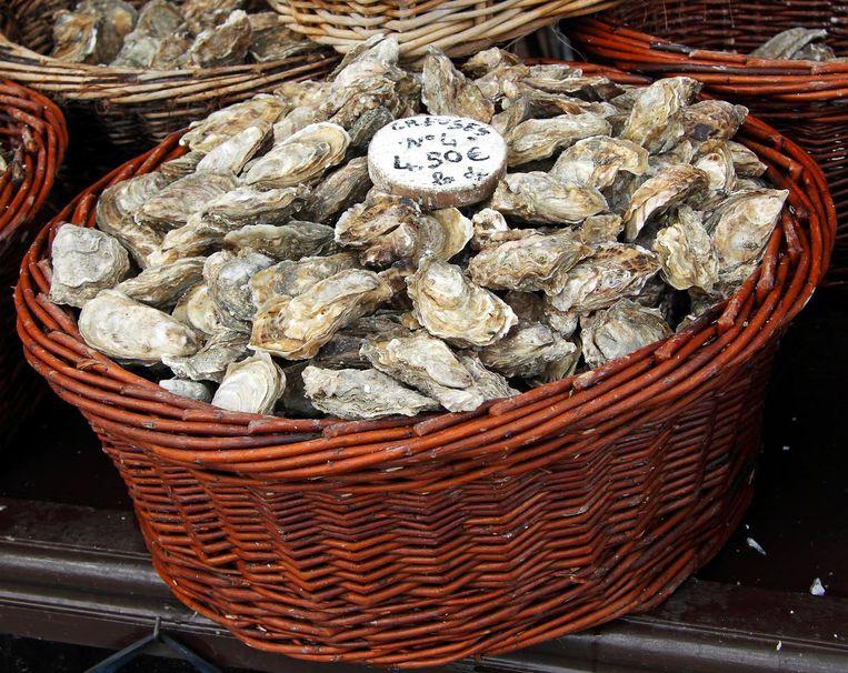 Oestermarkt in Cancale, Frankrijk Beeld