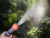 Tuinieren is niet alleen goedkoper dan therapie, het levert ook nog tomaten op…