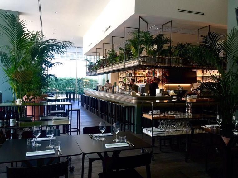 Cocktailhemel Botanical Club distilleert zijn eigen gin.  Beeld rv