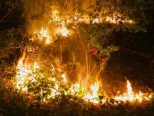Naar vuur riekende man met zwarte handen ontkent brandstichtingen Oss: 'Gewerkt in garage en ik rook'
