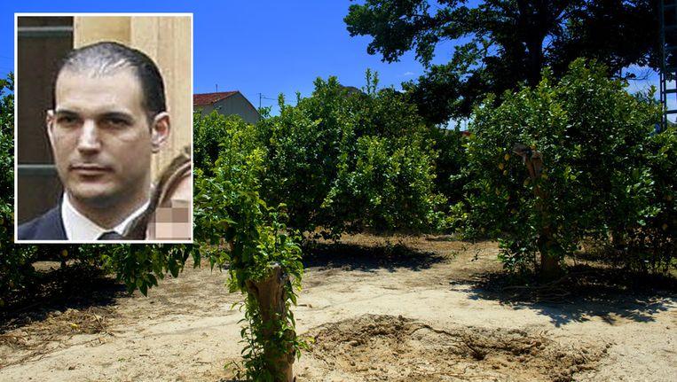 De plek in de citroenboomgaard in Alquerias, ongeveer 12 kilometer van Murcia, waar de Spaanse politie de lichamen van oud-volleybalster Ingrid Visser en haar partner Lodewijk Severein heeft aangetroffen. Inzet verdachte Juan Cuenca Lorente. Beeld ANP, EPA